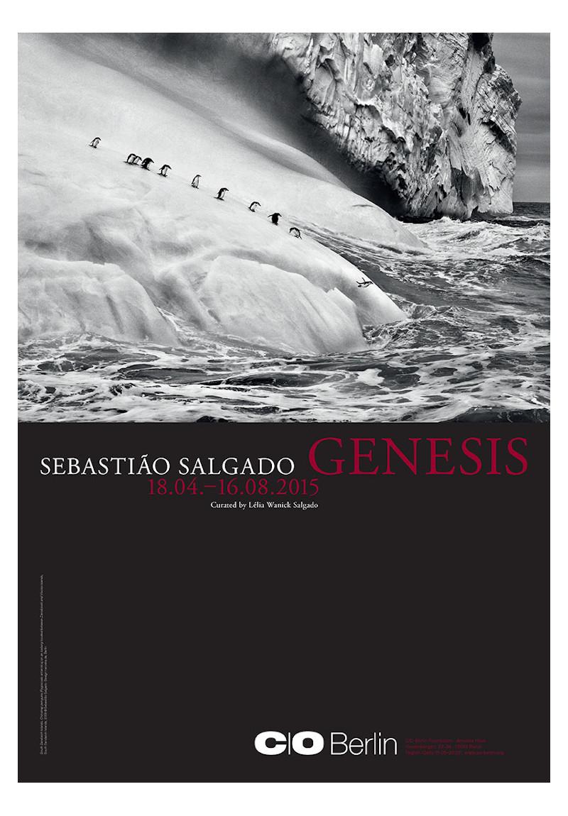 Sebastiao salgado genesis poster